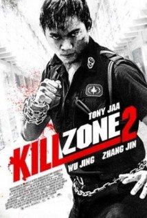 Baixar Kill Zone 2 Dublado